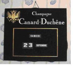 Canard_duchne